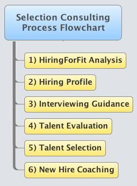 Selection Consulting Process